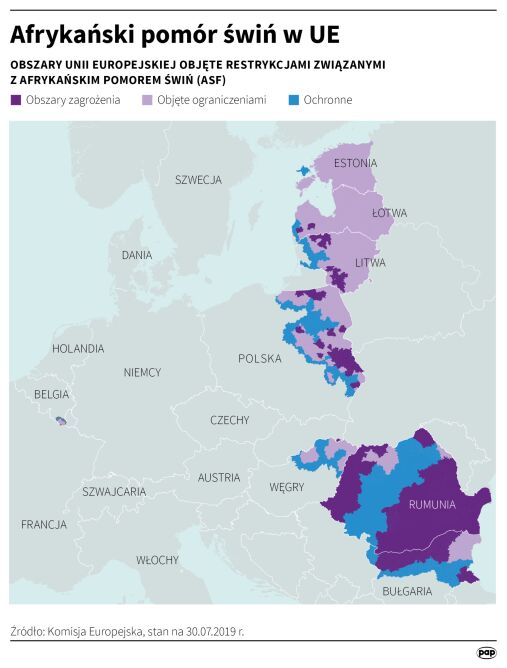Afrykański pomór świń w Unii Europejskiej (dane na 30 lipca 2019 r.) (PAP/Adam Ziemienowicz)