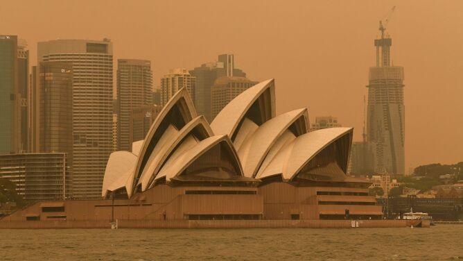 """Sydney spowite dymem. """"Nie możemy powstrzymać tych pożarów"""""""