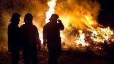 Spłonęły 22 hektary lasów w Tatrach