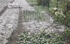 Zimowe krajobrazy na Ukrainie