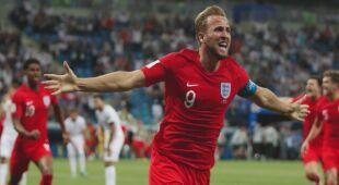 Mecz między Anglią a Tunezją utrudniły muchy